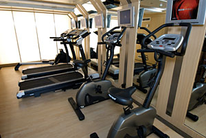 Swiss Sapphire - Fitness Room