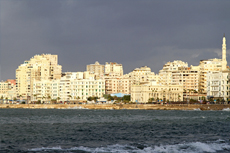Alexandria City Tour cruise excursion