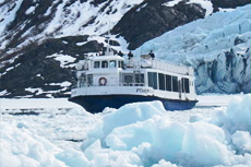 Anchorage Glacier Cruise