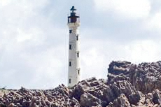 Aruba California Lighthouse cruise excursion