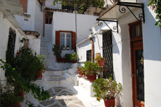 Athens (Piraeus) The Plaka Walking Tour cruise excursion