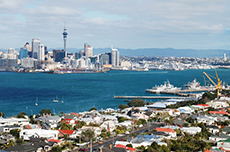 Auckland Devonport Walking Tour cruise excursion