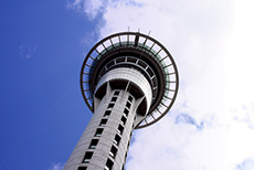 Auckland Sky Tower cruise excursion