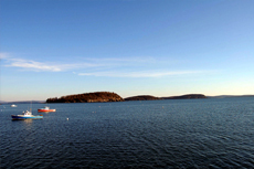 Bar Harbor Scenic Cruise