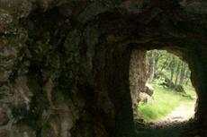 Barbados Cave Tour