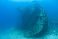 Barbados Shipwreck Snorkel cruise excursion