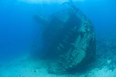 Barbados Shipwreck Snorkel