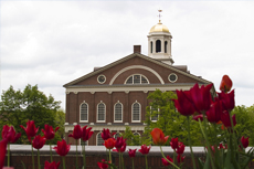 Boston Faneuil Hall & Quincy Marketplace