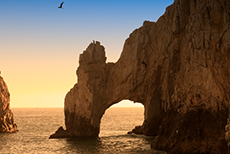 Cabo San Lucas The Arch (El Arco) & Lover's Beach