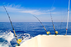 Cabo San Lucas Sport Fishing cruise excursion