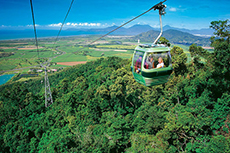 Cairns Skyrail Tour cruise excursion