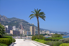 Cannes Monte Carlo Walking Tour