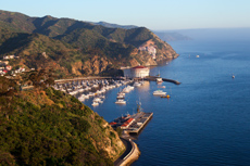 Catalina Island (California) Island Interior Tour