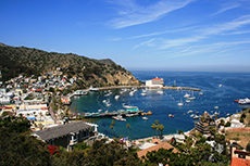 Catalina Island (California) Avalon  cruise excursion