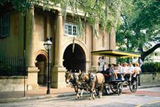 Charleston Carriage Tour cruise excursion