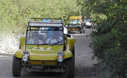 Costa Maya Dune Buggy cruise excursion