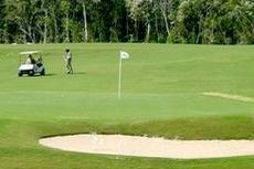Cozumel Golfing