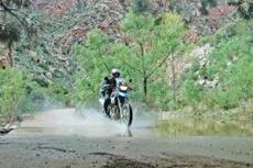 Cozumel Motorcycle Tour cruise excursion