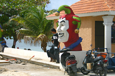 Cozumel Sightseeing