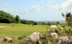 Curacao Golfing cruise excursion