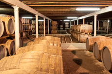 Curacao Distillery Tour