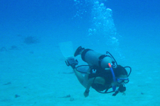Curacao Scuba Diving cruise excursion