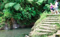 Dominica Ti Tou Gorge