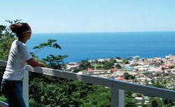Dominica Island tour cruise excursion