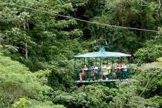 Dominica Aerial Tram cruise excursion
