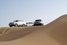 Dubai Desert Safari cruise excursion