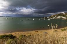 Dunedin Otago Harbor Wildlife Cruise