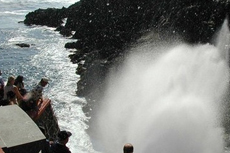 Ensenada Blowhole Walking Tour cruise excursion