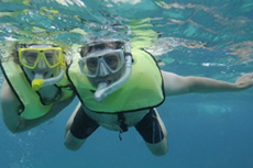 Grand Turk Snorkeling cruise excursion