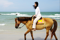 Grand Turk Horseback Tour cruise excursion