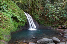 Guadeloupe Carbet Falls