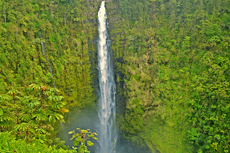 Hilo Akaka Falls cruise excursion