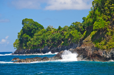 Hilo Island Tour cruise excursion
