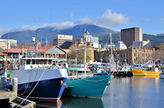 Hobart City Tour cruise excursion