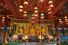 Hong Kong Po Lin Monastery cruise excursion