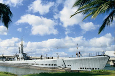Honolulu Pearl Harbor cruise excursion