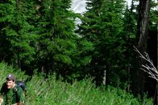 Juneau Hiking