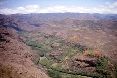 Kauai Waimea Canyon cruise excursion