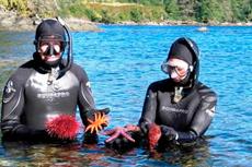 Ketchikan Snorkeling cruise excursion
