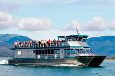 Ketchikan Misty Fjords Wilderness Cruise cruise excursion