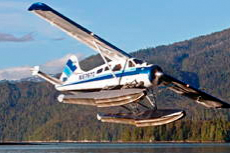 Ketchikan Flightseeing cruise excursion