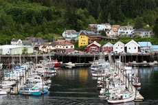 Ketchikan Sea Cycles cruise excursion