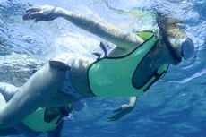 Key West Snorkeling cruise excursion