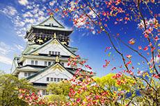 Kobe Osaka