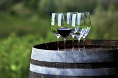 Lyon Wine Tasting