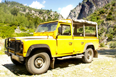 Madeira (Funchal) Jeep Tour cruise excursion